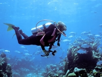 triangle-diving-scuba-diving-in-bm
