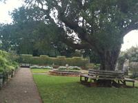 botanical-gardens-picnic-gardens-and-arboretums-bm