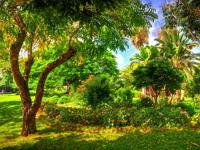 par-la-ville-gardens-and-arboretums-bm
