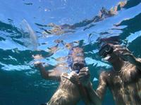 snorkel-bermuda-snorkeling-bermuda