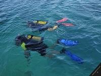 blue-water-divers-and-watersports-bermuda-scuba-diving-bm