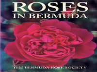 bermuda-rose-society-gardens-and-arboretums-bm