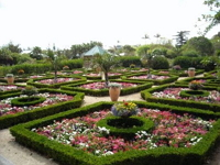 botanical-gardens-gardens-and-arboretums-bm