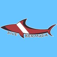 dive-bermuda-bermuda-scuba-diving-bm