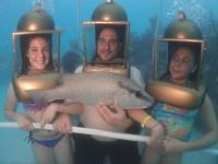 Hartley's Helmet Diving best attractions to visit in Bermuda